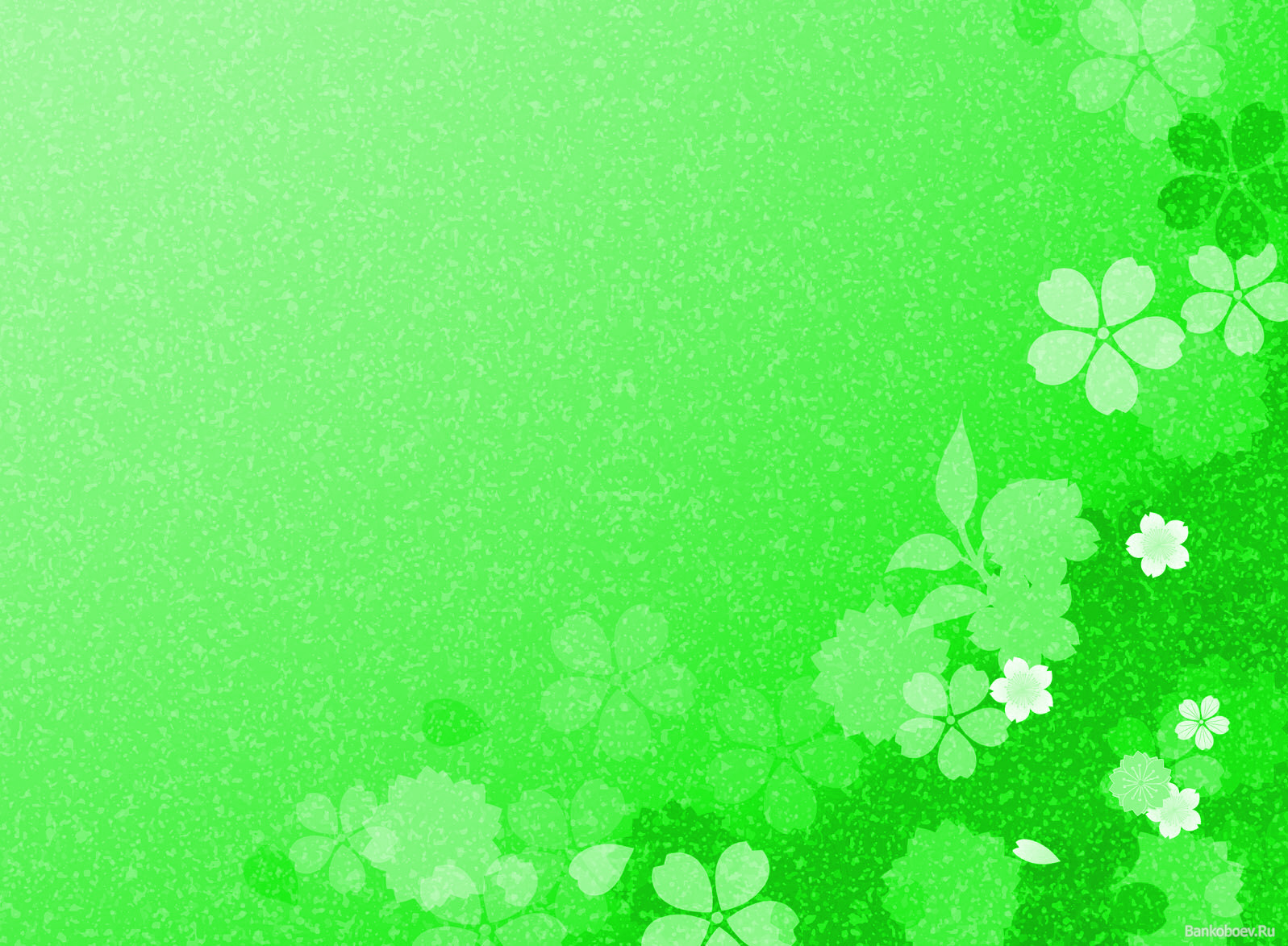 Зеленый фон для поздравления 88